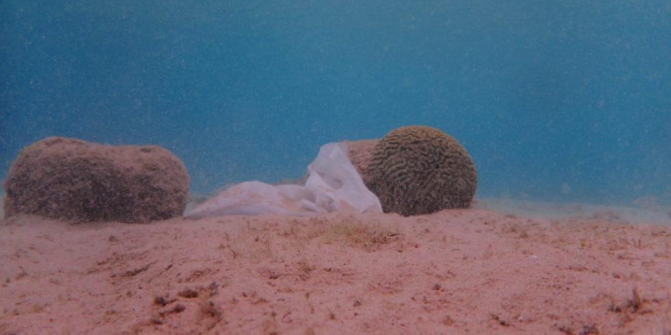 Bei Tauchgängen kann man Plastik am Meeresboden sehen – wie hier bei Curacao. Sobald es in größere Tiefen geht, wird es mit dieser Methode schwierig. Foto: Joost den Haan - planblue