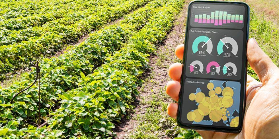 Welche Bedeutung haben digitale Technologien? Eine Frage, die Fraunhofer-Forscher untersucht haben. Foto: panthermedia.net/AndreyPopov