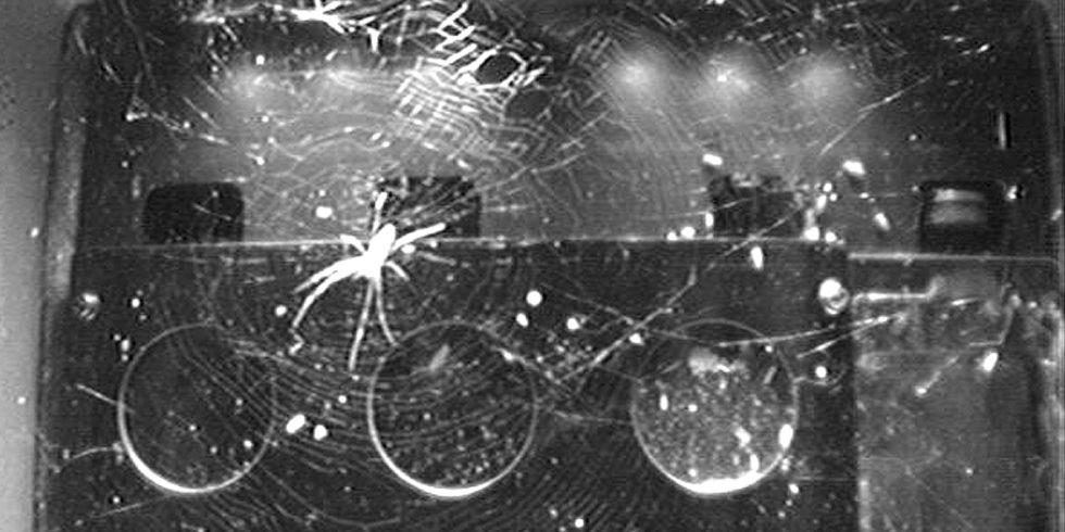 Fast 15.000 Bilder von der ISS werteten die Forschenden aus - und entdeckten Unerwartetes. Foto: BioServe Space Technologies, University of Colorado Boulder
