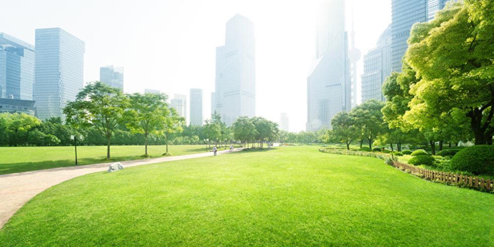 Wie sieht die Welt im Jahr 2050 aus? Fridays-for-Future-Sprecher Sebastian Grieme glaubt: Straßen werden zunehmen Parks weichen. Foto: panthermedia.net/Iakov
