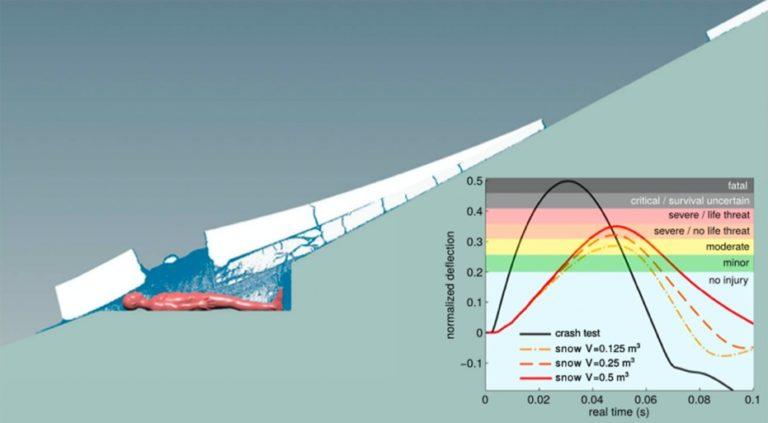 Die Simulation zeigt die Dynamik einer Schneebrettlawine und ihre Auswirkungen auf den menschlichen Körper: Eine harte Lawine könnte Verletzungen verursacht haben, wie sie an den Opfern entdeckt worden waren. Foto: Gaume/Puzrin