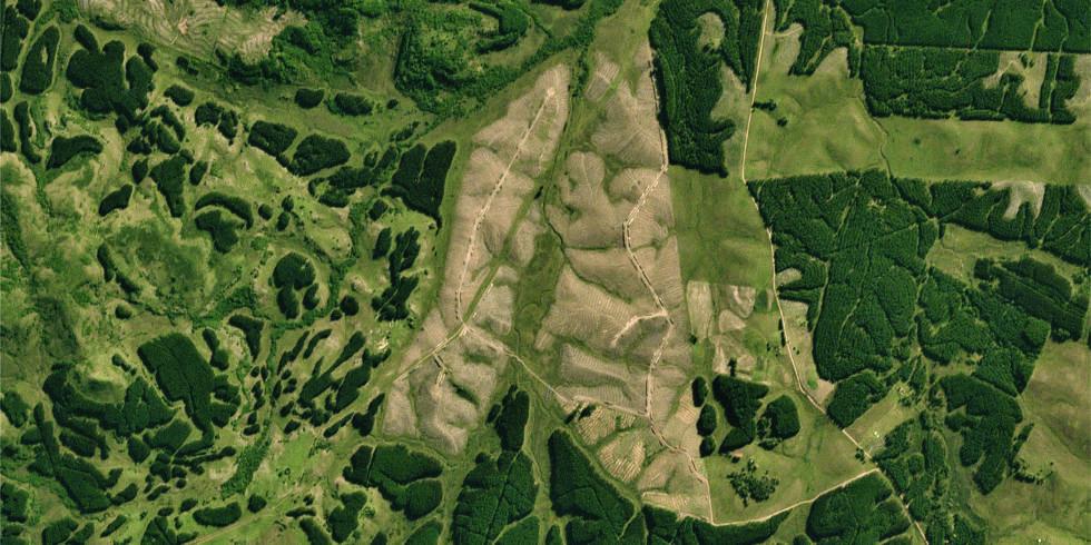 Wald von oben in Uruguay