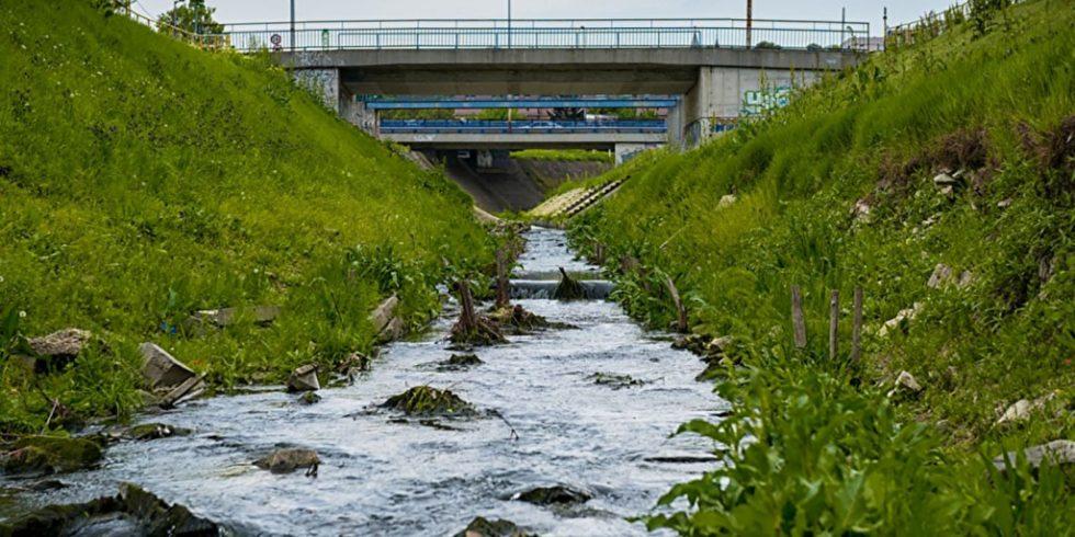 Flüsse und Seen sollten regelmäßig auf ihre Wasserqualität überprüft werden, gerade wenn ein Industriegebiet in der Nähe liegt. Foto: PantherMedia/svedoliver