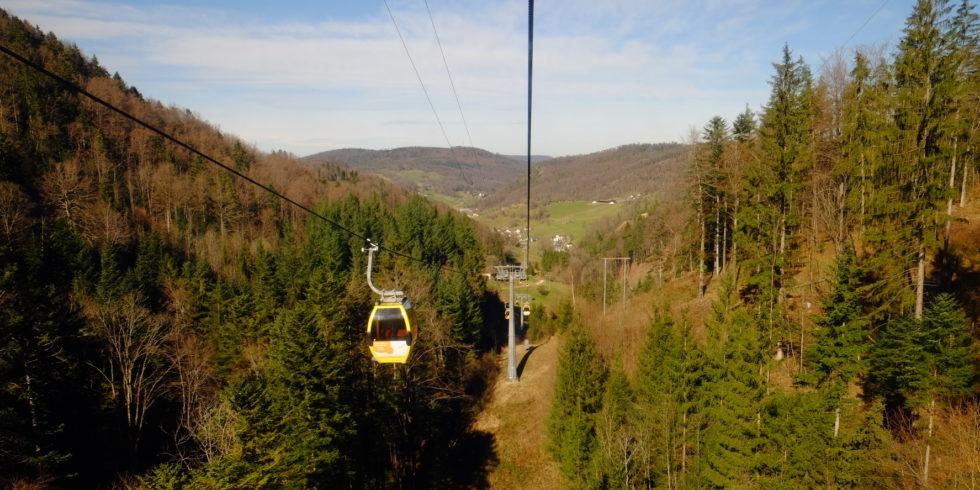Seilbahn führt durch Wald