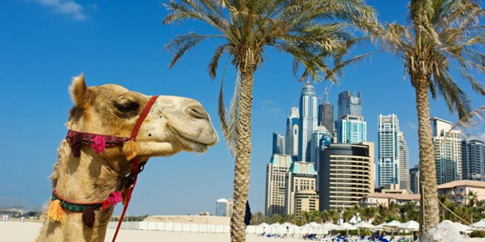Dubai bietet ideale Voraussetzungen für die Nutzung von Sonnenenergie. Foto: PantherMedia/Observer
