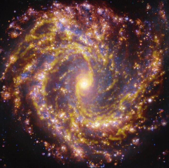 Bild NGC 4303 Galaxie