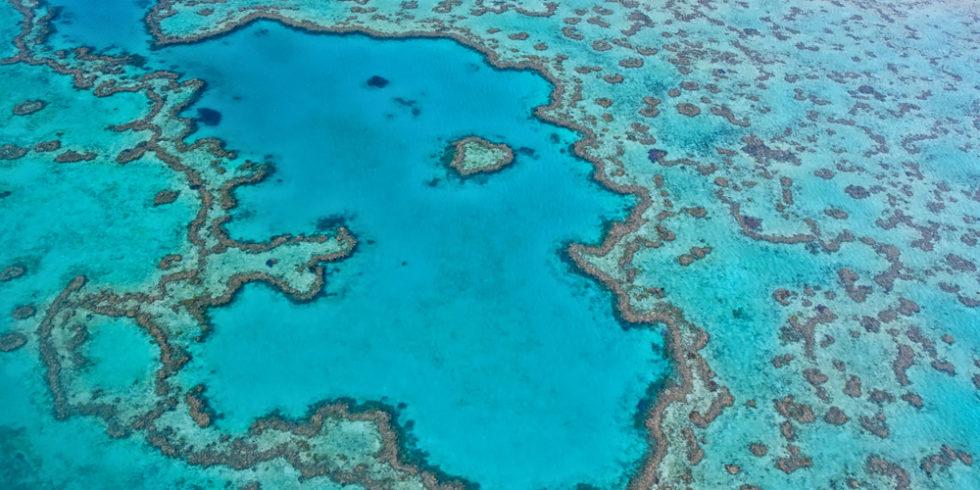 Luftaufnahme Great Barrier Reef