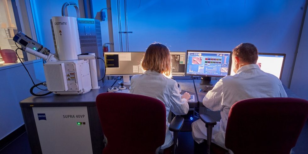 Bestimmung der Konzentration lungengängiger Fasern an Luftproben aus Arbeitsbereichen mittels Rasterelektronenmikroskopie. Foto: DGUV/Volker Lannert
