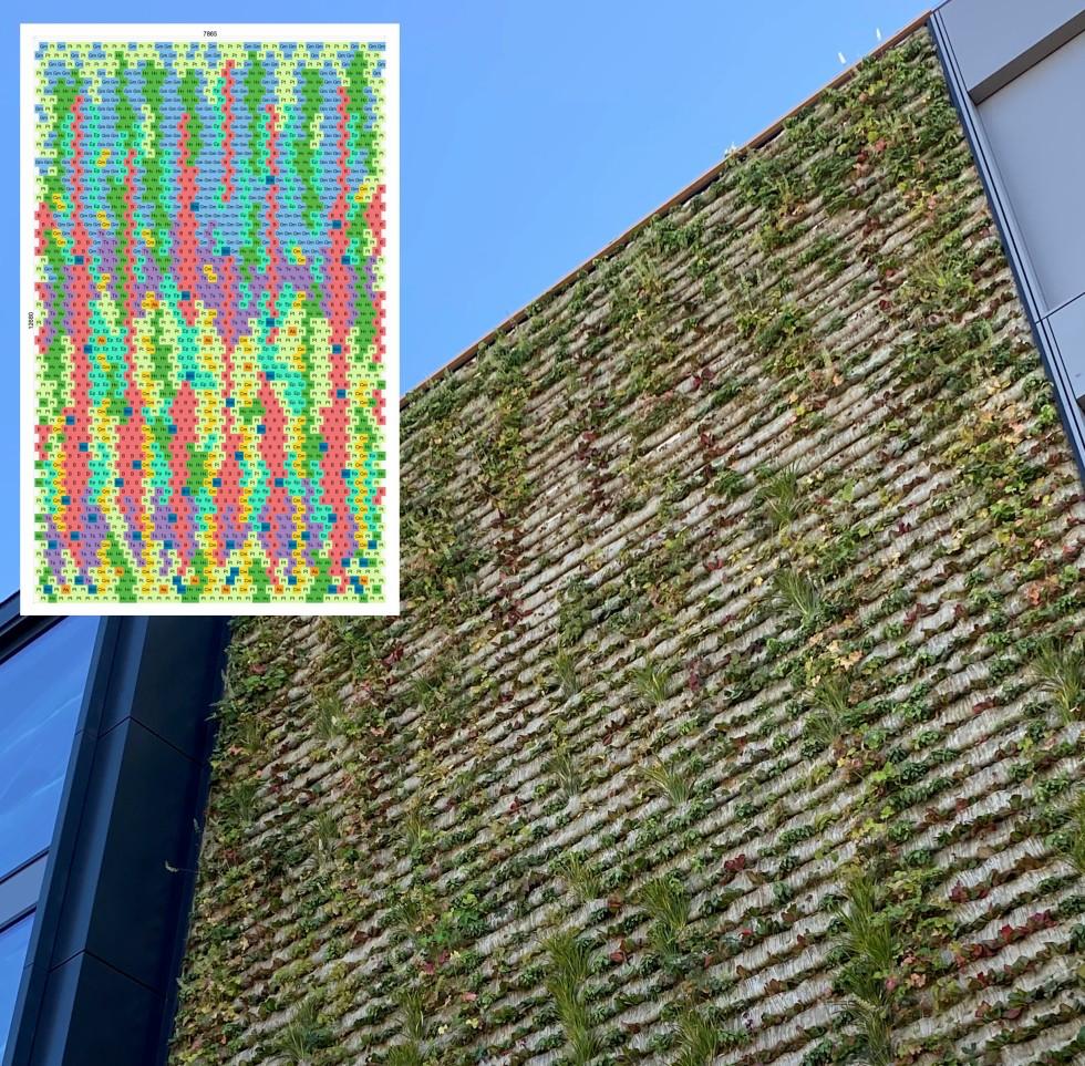 Senkrecht gärtnern an der Büro-Grünfassade