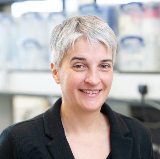 Prof. Dr. Julia Schnabel leitet das Institute of Machine Learning in Biomedical Imaging (IML) am Helmholtz Zentrum in München. Foto: Helmholtz Zentrum München
