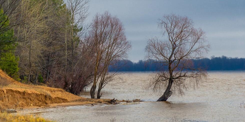 Bei Hochwasser können Flüsse giftige Sedimente anschwemmen. Foto: PantherMedia / ekina1